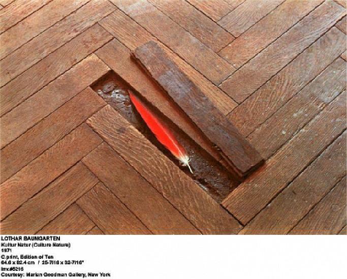 Lothar Baumgarten, Kultur-Natur 1971, C -print